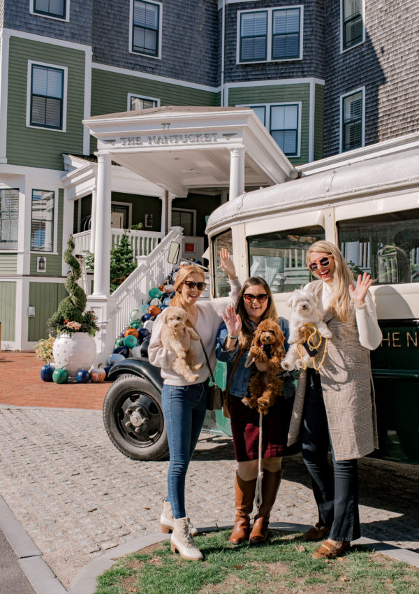 Pups and Pals Getaway to the Nantucket Hotel & Resort