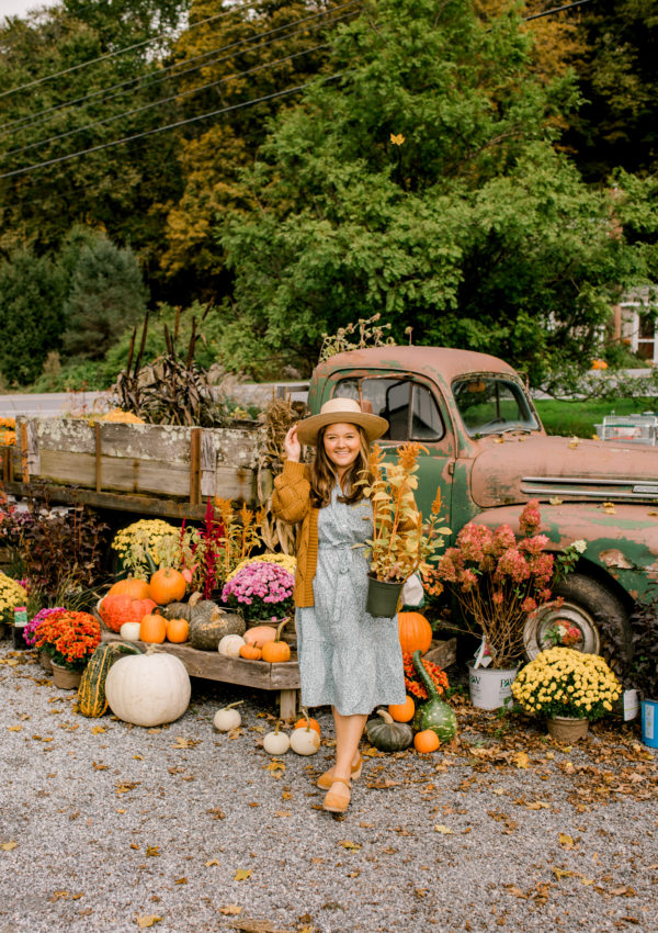 Fall Favorites with Draper James